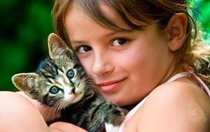 Kako upoznati djecu s mačićima